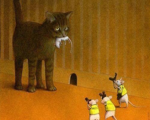 le chat et les souris (source facebook PP HU)